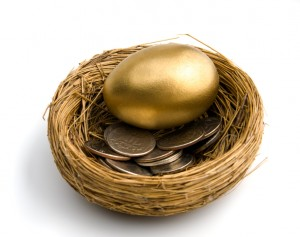 Nest Egg with coins