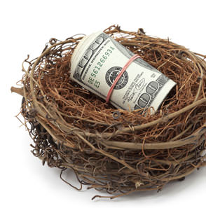 photo-money-nest